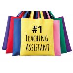 1 TEACHERS ASSISTANT BAG